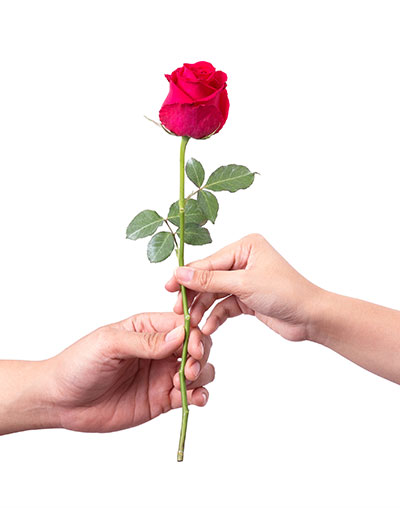 Yvonne Wood Wedding & Marriage Celebrant - Ceremonies and Services - Rose Presentation